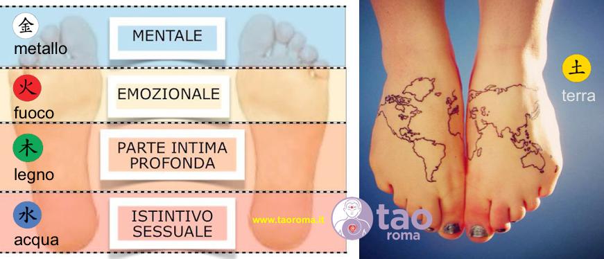 riflessologia plantare 5 elementi tao roma